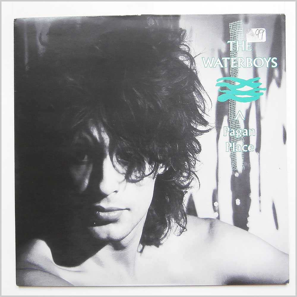 Vinyl Lp The Waterboys A Pagan Place Chen 2 The