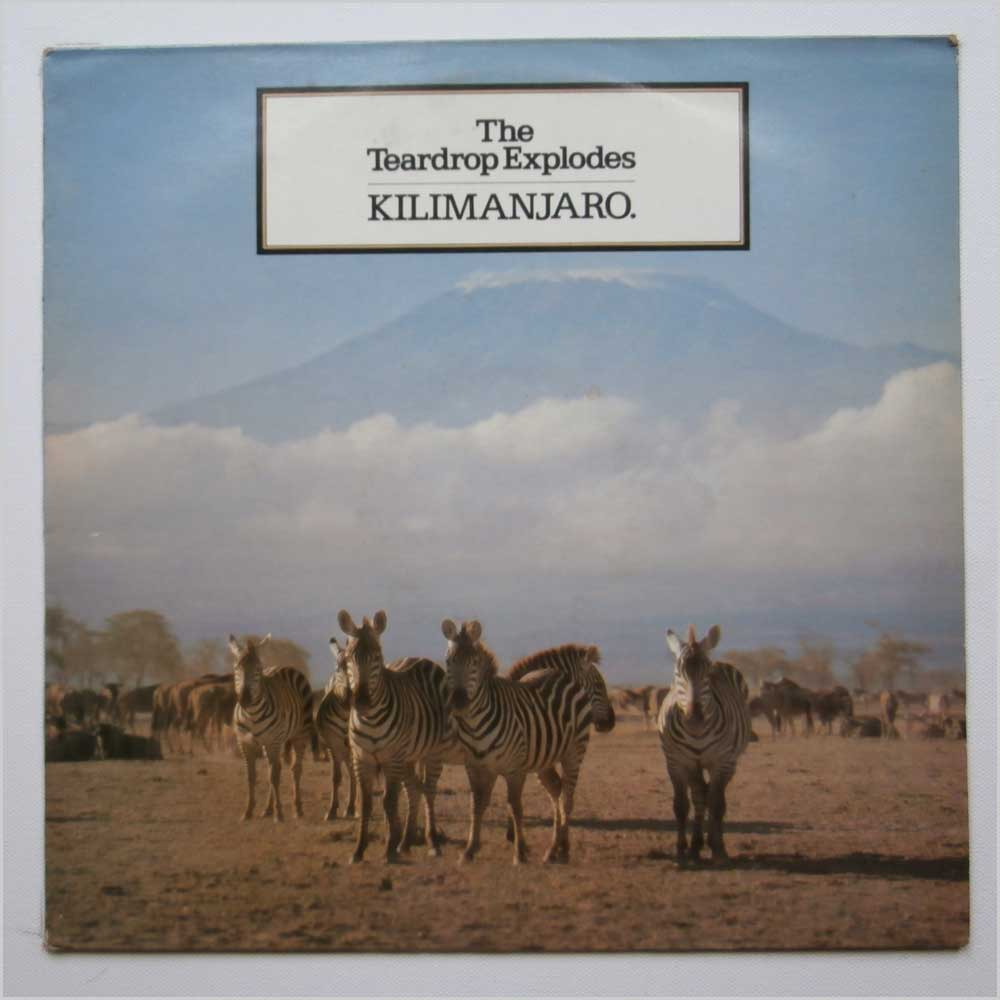Vinyl Lp The Teardrop Explodes Kilimanjaro Price 59