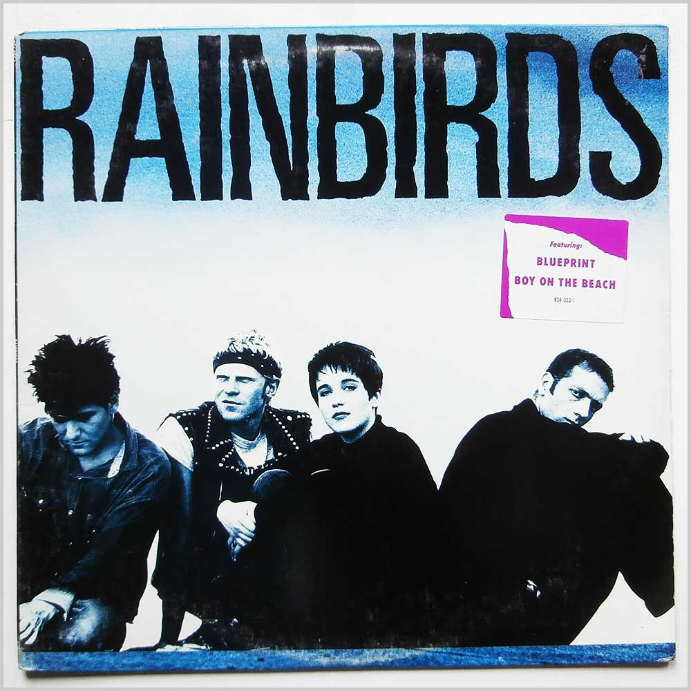Mercury records rock music record lp for sale recordsmerchant rainbirds rainbirds 834 023 1 malvernweather Image collections